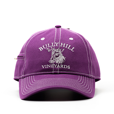 Product Image for Zipper Hat - Purple